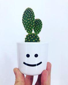 Say no more. #bloempotkapsel #HEMA #cactus #flowerpot