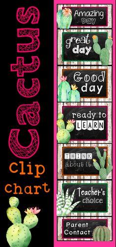 Twink teach factory clip