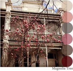 magnolia colour palette