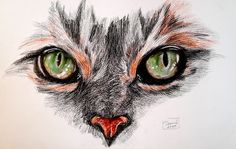 #cat #eyes #drawing #colored #pencils #art Cat Eyes, Pencil Drawings, Colored Pencils, Cats, Pencil, To Draw, Kunst, Colouring Pencils, Gatos