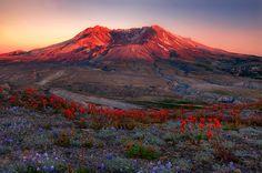 Soft Light for St. Helens (by Trevor Anderson)