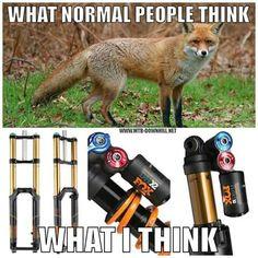Fox Shox!!