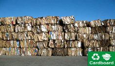 Get Personalized Cardboard and Paper Recycling Solutions from Adelaide Eco Bins