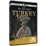 http://turkey.mycityportal.net - Nature: My Life as a Turkey - #turkey