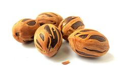 Nutmeg is the extensive use around the world. The appealing flavors of the nutmeg in the prime reasons for its immense popularity. Traditionally people have been using nutmeg due to immense health benefits. Health Remedies, Home Remedies, Natural Remedies, Spice Image, Digestion Difficile, Myristica Fragrans, Gastro, Spice Containers, Eating Clean