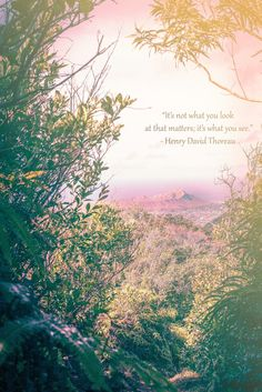 """""""It's not what you look at that matters, it's what you see"""" Henry David Thoreau"""