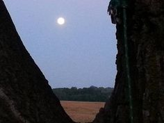 The morning after  #eclipse #Nebraska #moon #countryliving #cornfield