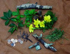 Virginia Creeper Vine, Marigolds, Bark, Pennies, Grasses, Lichen, Rusty Nails - All can be used for dyeing fabric.