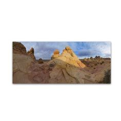 Trademark Fine Art Cottonwood II Canvas Art by Moises Levy, Size: 10 x 24, Brown