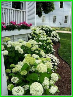 Discover ideas virtually Landscaping stomach Of House. easy landscaping ideas for tummy of house.  *** You can get more info by clicking on the image. Small Front Yard Landscaping, Garden Design, Yard Design, Small Yard Landscaping, Cheap Landscaping Ideas