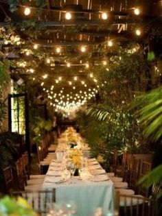 Bistro lights overhead lend a magical quality.