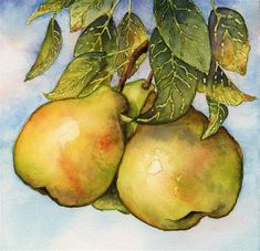 """Daily Paintworks - """"Three Pears"""" - Original Fine Art for Sale - © Cynthia Armstrong"""
