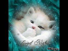 10 Cute Good Night Quotes, Sayings And Gifs gifs good night good evening good evening quotes good night quotes good night images good night gifs good nights quotes and sayings Good Night Dear Friend, Cute Good Night Quotes, Good Night Sleep Well, Good Night Love Images, Good Night Messages, Good Night Image, Good Morning Good Night, Evening Greetings, Good Night Greetings