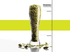 Craft Beer Is Annihilating The Hop Supply | Popular Science
