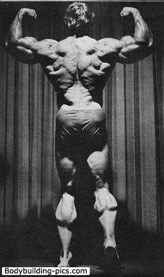 Arnold Schwarzenegger 989