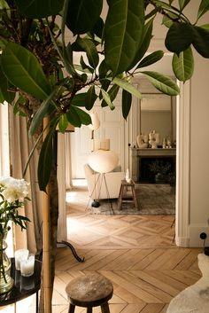 Tree Interior, Diy Interior, Interior Exterior, Best Interior, Apartment Interior, Cozy Living Rooms, New Living Room, Living Room Decor, Dining Rooms