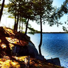 Cottage Life Art Photography, Beautiful Places, Wildlife, Cottage, Outdoors, Spaces, Nature, Plants, Fine Art Photography