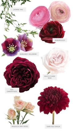 burgundy and pink bouquet flower guide wedding flowers Can't Stop Staring At this Burgundy Bouquet by Seed Floral Wedding Flower Arrangements, Flower Centerpieces, Wedding Centerpieces, Floral Arrangements, Wedding Decorations, Burgundy Floral Centerpieces, Centerpiece Ideas, Table Decorations, Burgundy Bouquet