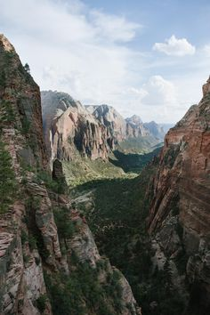 #exploreelsewhere: Zion National Park Utah [OC] [2832 4256]