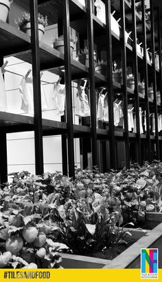 """L'esprit de la ferme envahit les moindres recoins de notre stand """"Tiles & Food Novoceram"""" au #Cersaie2014. On ressentirait presque une légère brise et l'odeur du foin. Nous en avons profité pour étendre notre linge ! http://www.novoceram.fr/blog/evenements-novoceram/novoceram-stand-cersaie-2014 #TILESANDFOOD #CERSAIE"""