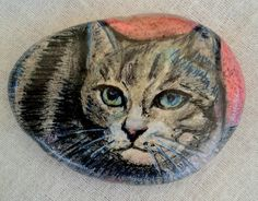 Cat:pencils on pebble.