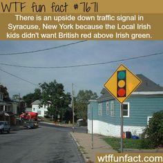 upside down traffic signal in Syracuse, NY - WTF...