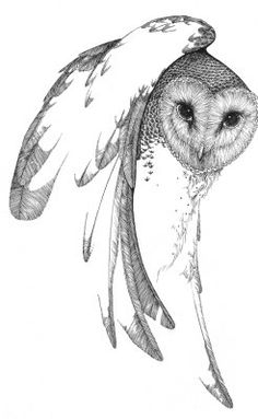 Another owl post. Have you ever seen the art of Peter Parnall ? Owl Tattoo Drawings, Bird Drawings, Animal Drawings, Lechuza Tattoo, Owl Sketch, Owl Tattoo Design, Psy Art, Beautiful Owl, Bird Prints