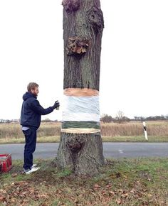 Awesome Spray Painted Illusion of a Hovering Tree Cut in Half - My Modern Met