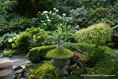 MySecretGarden: Fairytale Garden of Marion and Steve