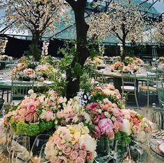 Pippa Middleton wedding: FIRST LOOK inside the stunning reception venue Pippas Wedding, Wedding Wraps, Floral Wedding, Wedding Reception, Wedding Flowers, Wedding Ideas, Wedding Inspiration, Wedding Tables, Forest Wedding