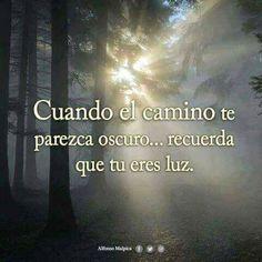 Tu eres Luz.
