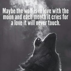 I Love This Saying <3 #wolf #wolves #animals
