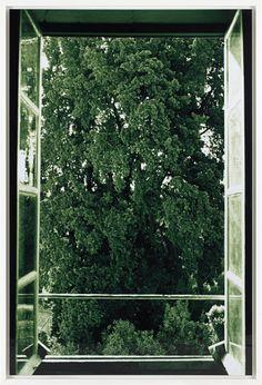 WOLFGANG TILLMANS Tree Filling Window, 2002 chromogenic print, in artist's frame sheet 82 x 55 1/2 in. (208.3 x 141 cm.) frame 84 x 57 in. (213.4 x 144.8 cm.)