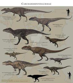 Carcharodontosauridae by PaleoGuy on DeviantArt