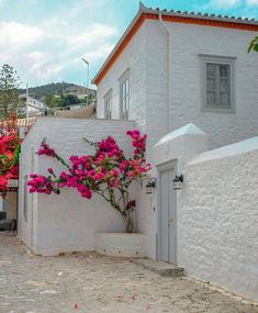 Bright white all over Welcome May! Architecture Student, Architecture Old, Welcome May, Beautiful Homes, Beautiful Places, Architect Jobs, Green Shutters, Greek House, Perfect World