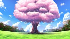 cherry_blossoms clouds flowers fortissimo//akkord:bsusvier game_cg grass landscape nobody scenic sky tree Episode Interactive Backgrounds, Episode Backgrounds, Anime Scenery Wallpaper, Anime Backgrounds Wallpapers, Scenery Background, Background Drawing, Cherry Blossom Tree, Blossom Trees, Casa Anime