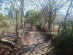 www.elsalvador.com - Detalle de imágen