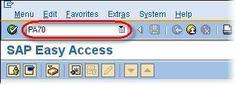 SAP Fast Entry Tutorial, SAP Certifications