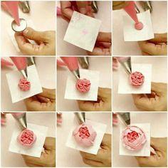 bunga 3 ttrial