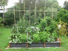 vegetable garden planning and layout | ... develop an integrated land design which includes vegetable gardens
