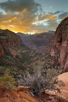 Zion | Sunset, National Park