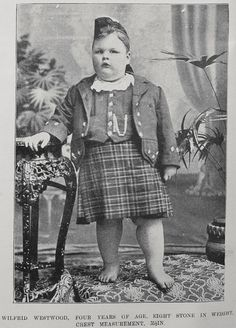 Wilfred Westwood, baby giant from New Zealand featured in Auckland Weekly article c. 1901. Wilfred weighed 112 pounds at 4 years old.