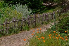 Love the rustic fence