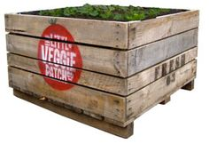 Little Veggie Patch Co 1.22 x 1.22 x ? will deliver, lined with void, $175