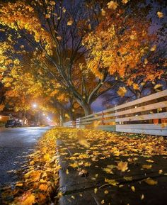 Beautiful Places To Visit, Beautiful World, Cool Places To Visit, Wonderful Places, Fall Pictures, Nature Pictures, Autumn Photography, Landscape Photography, October Country