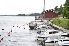 boats Boating, Finland, Summer, Beautiful, Boats, Rowing, Fern, Canoeing, Summer Time