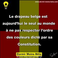 Le drapeau belge est aujourd'hui le seul au monde à ne pas respecter l'ordre des couleurs dicté par sa constitution.