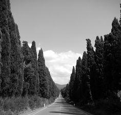 Giosuè Carducci, Bolgheri - Davanti a San Guido