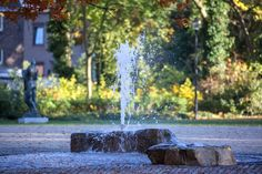 http://www.landezine.com/index.php/2016/11/city-park-kerkrade/bplusb-kerkrade_stadspark_11/