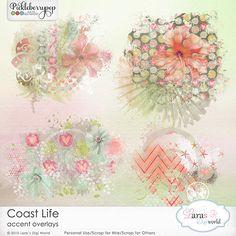 Coast Life Accent Overlays